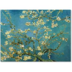 Trademark Fine Art Almond Branches In Bloom 1890 Canvas Art by Vincent van Gogh, Size: 14 x 19, Multicolor