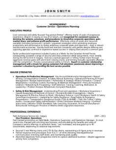 Vice President Of Administration Resume 48 Best Best Executive Resume  Templates U0026 Samples Images On .