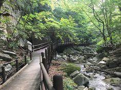 사진출처=환경부 South Korea, Railroad Tracks, Scenery, River, City, Amazing, Pictures, Outdoor, Korean