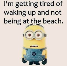 Funny Minions Quotes For me these Small yellow adorable capsule looking characters are very entertaining, i love their movie and i am surely loving their quotes which are taking internet by storm, …