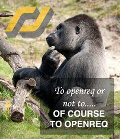 Apply for a job at Openreq.com!