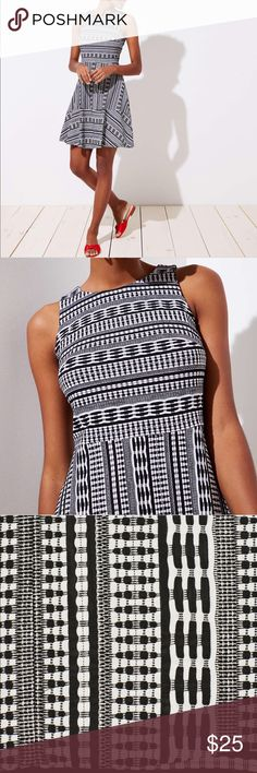 5c58e2c624d LOFT Black and White Fit and Flare Dress