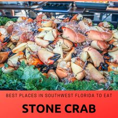 Everything you need to know about Florida stone crab season from where to get them in Sarasota, Fort Myers, and Naples to how to eat them! MustDo.com #stonecrab #fortmyersbeach #naples #sarasota #florida #crabclaws #evergladescity #mustdovisitorguides Clearwater Florida, Sarasota Florida, Florida Beaches, Fort Myers Restaurants, Captiva Restaurants, Area Restaurants, Florida Food, Florida Travel, Stone Crab Season