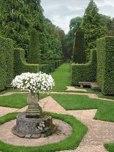 Topiary garden white centerpiece.