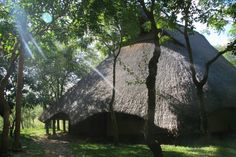 Victoria Falls, Zimbabwe, Lodges, Cosy, Africa, Plants, Kids, Young Children, Cabins