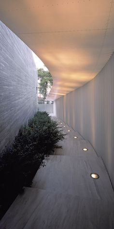CIRCULATION/ LIGHTING/ ADJACENCIES Hallways with direct openings to the outside, natural lighting, internal gardens