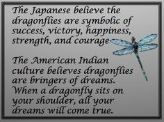 Quotes About Life :The Story of the Dragonfly - Quotes Daily Dragonfly Quotes, Dragonfly Art, Dragonfly Tattoo, Dragonfly Symbolism, Dragonfly Meaning Spiritual, Dragonfly Images, Spirit Guides, Statements, Positive Thoughts