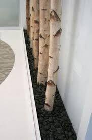 decor of birch - Google pretraživanje