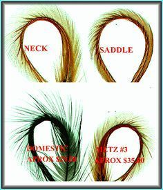 Hackle and the Woolly Worm Beginning Fly Tying,Beginning Fly Tying, How to tie fly, Fly tying Step by Step Patterns & Tutorials