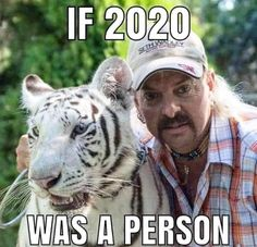 tiger king meme Hey All You Cool Cats and Kittens Memes Humor, Funny Memes, Funny Drunk, Drunk Texts, 9gag Funny, Stupid Memes, Weekend Meme, King Meme, Funny Tiger