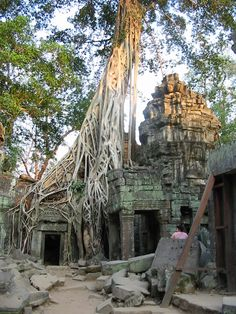 Ta Prohm in the Angkor Wat complex in Cambodia where part of the first Tomb Raider movie was filmed.