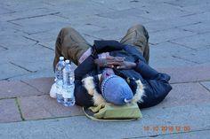 Il giusto riposo dopo tanta fatica (Piazza Maggiore)