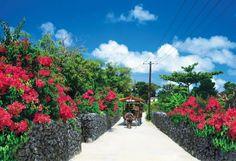 竹富島 (沖縄)