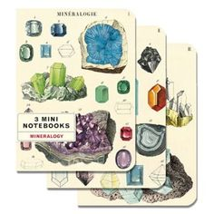 Three mini notebooks packaged in one set featuring mineralogy imagery. Lined, blank, and graph interiors. Images from the Cavallini & Co. archives. 96 pages each<br><br>Size - 4 x 5.5