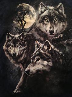 Wolf Türk