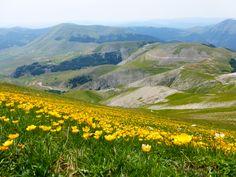 Monti Sibillini Castelluccio di Norcia