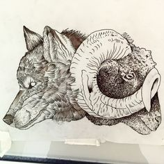 New drawings waiting for tour skin By #Gael_Cleinow #hand_job_tattoo #black #ink #illustration #flash #flashworkers #blacktattooart #blackworkers #blackworkerssubmissions #moreblacktattoo #onlyblackart #onlyblacktattoo  #wolf_head_tattoo #sheep_head_tattoo (at Toe Loop Tattoo)