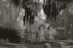 Bonaventure Cemetery, Savannah GA,  by Dick Bjornseth