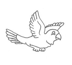 Birds Of Africafree Coloring Page