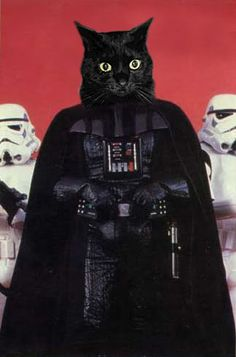 What's really under the helmet. He's on the dark side of the Furce.
