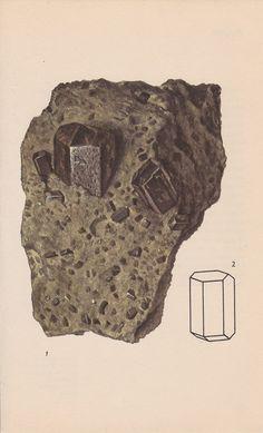 Vintage Print Rocks and Minerals Hornblende by PineandMain