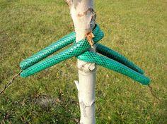 Garden Hose Tree Tie Support