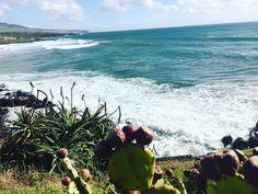 Atlantic ocean waves 🌊🌊🌊 #açores #azores #azoresislands #loveazores #saomiguel #pontadelgada #atlanticocean #waves #nature #landscape #sunday #bluesky #bluewater #photooftheday #picoftheday #shareazores #iloveazores #mountains #vulcano #island #portugal #purelife #bestplacetogo #travel2017 #instagood #beautifuldestinations #kthandmadedesign #travel #worldtraveler