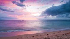 Blissful Paradise