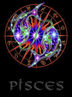 Pisces:  Pisces the Fish.