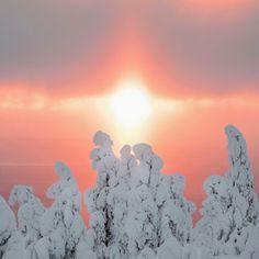Crazy sunset in Riisitunturi. Riisitunturi National Park in Finnish Lapland. Photo by Julia Kivelä @julia_kivela instagram.