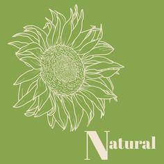 Body Types, Dandelion, Natural, Makeup, Flowers, Plants, Inspiration, Make Up, Biblical Inspiration