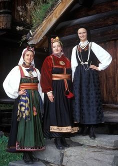 Verter i drakt fra telemarken. History Of Norway, Folk Costume, Costumes, Norway Viking, Frozen Costume, Folk Fashion, People Of The World, Culture Travel, Traditional Outfits