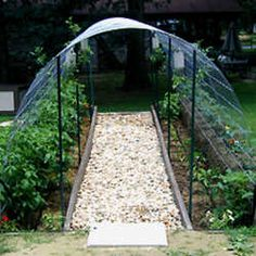 Arched trellis using cattle panels