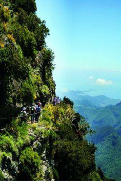 Wat een prachtige natuur vind je toch op Madeira  Vlieg volgende maand naar het bloemeneiland Madeira en geniet van de prachtige natuur >>> https://ticketspy.nl/deals/ontdek-het-bloemeneiland-madeira-8-dagen-een-prachtig-4-appartement-va-e276/