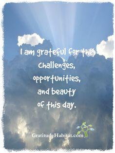 I am grateful..... Visit us at: www.GratitudeHabitat.com