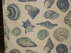 Seashell fabric nautilus blue sea green from Brick House Fabric: Novelty Fabric