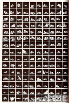 Paul Chadwick - Concrete - many panels - comics Class Comics, Comic Art, Comic Books, Alternative Comics, Storyboard, Storytelling, Concrete, Black And White, Inspiration