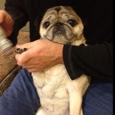 Unlike my mom, I don't like getting my nails done!