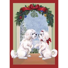 Absolutely Adorable! No Longer Available as of 2014 Maltese Mistletoe Maltese Christmas Cards - The Danbury Mint