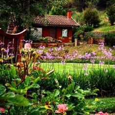 Amantikir (Campos do Jordão-SP)  #amantikir #saopaulo #camposdojordao #jardim #garden #flowers #landscape #paisagem #trip #viagem #brazil #brasil #nature #natureza by eduardosoares19
