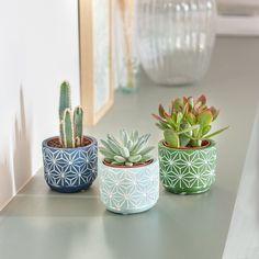Faux Plants, Potted Plants, Indoor Plants, Crassula, Painted Plant Pots, Decoration Plante, Terracotta Pots, Jar Crafts, Plant Decor