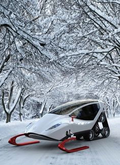 Luxury snowmobile... by lesa
