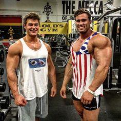 dbol steroids wiki