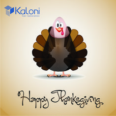 Got no hair? Kaloni can help! Now you can add hair to the list of what you're thankful for! Happy Thanksgiving!