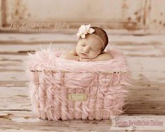 Ivory Wire Basket - Newborn Photography / Newborn Photoshoot / Baby Photos