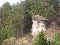 Prírodná pamiatka Ľupčiansky skalný hríb...vznikol zvetrávaním usadených hornín
