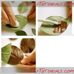 Chocolate leaf decorations for a cake using real leaves as templates....