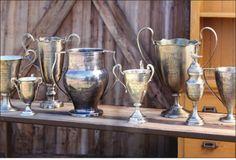 old trophys. Flower arrangements