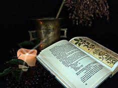 Magiczny zielnik. Jak przygotować zioła do magii i leczenia?