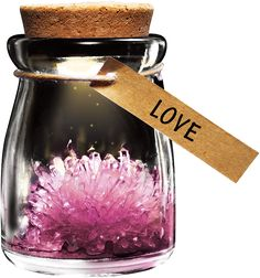 DIY Growing Crystal Wish Flower - SuperSmartChoices - 1